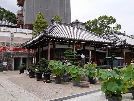 大本山 中山寺  [兵庫県宝塚市]