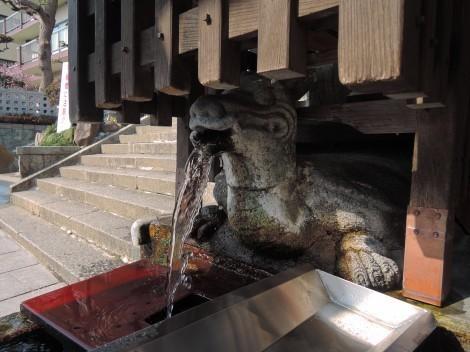 明石 亀の水
