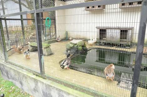 龍野公園動物園 [たつの市龍野町]
