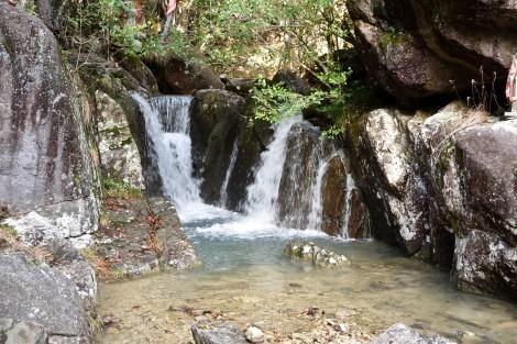 竹谷山渓谷
