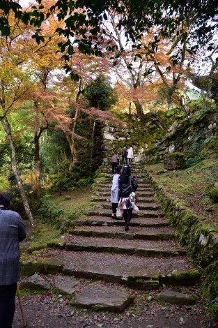 瑞巌山「高源寺」の紅葉 [兵庫県丹波市]