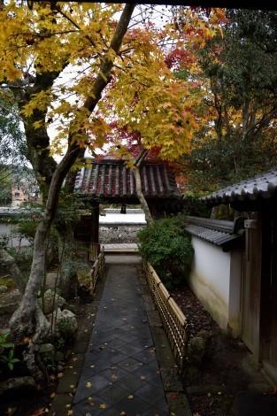 太山寺 安養院庭園