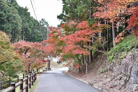 石龕寺(せきがんじ)の紅葉 [兵庫県丹波市]