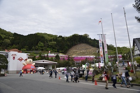 ヤマサ蒲鉾の芝桜 兵庫県姫路市