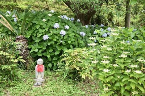 あわじ花の歳時記園