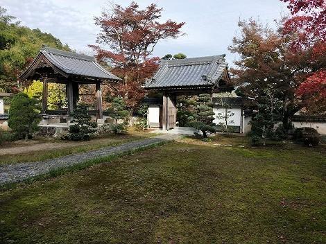 三寶寺の紅葉