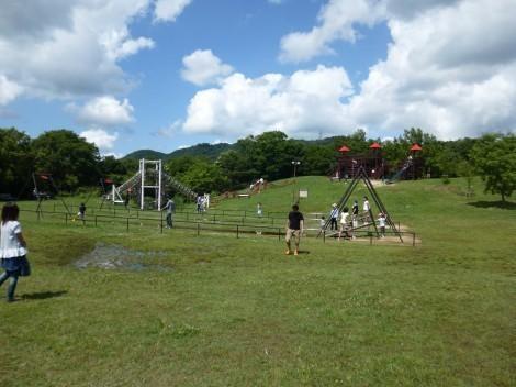 神戸市立森林植物園 ぼうけんの丘